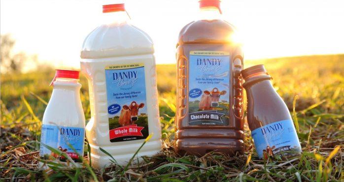 Dandy Breeze Creamery Milk White and Chocolate Milk